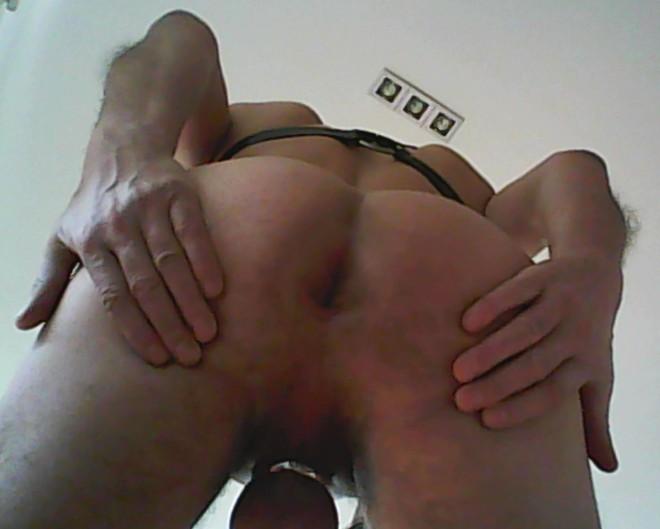 perfiles erótico golondrina